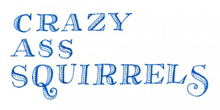 squirrels-700x350.jpg