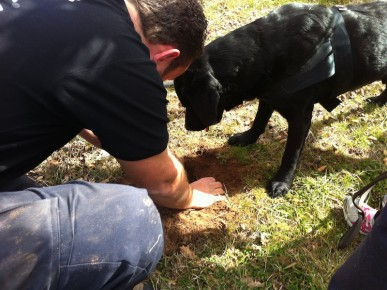 digging up the prize truffle