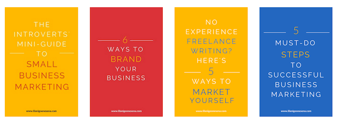 How To Rebrand Your Website From Portfolio To Business | Lilani Goonesena https://www.lilanigoonesena.com/blog/website-rebrand-portfolio-to-business In 2016, I changed my whole business focus and rebranded my website from portfolio to business. This is the exact process of how I did it! New branded blog post graphics designed using Canva.