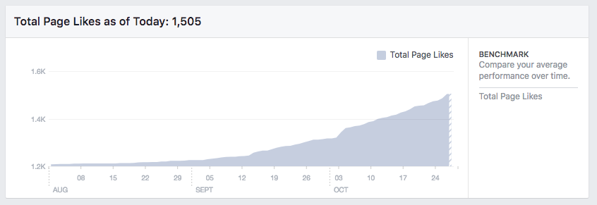lilanigoonesena-revive-neglected-facebook-page-page-views.png