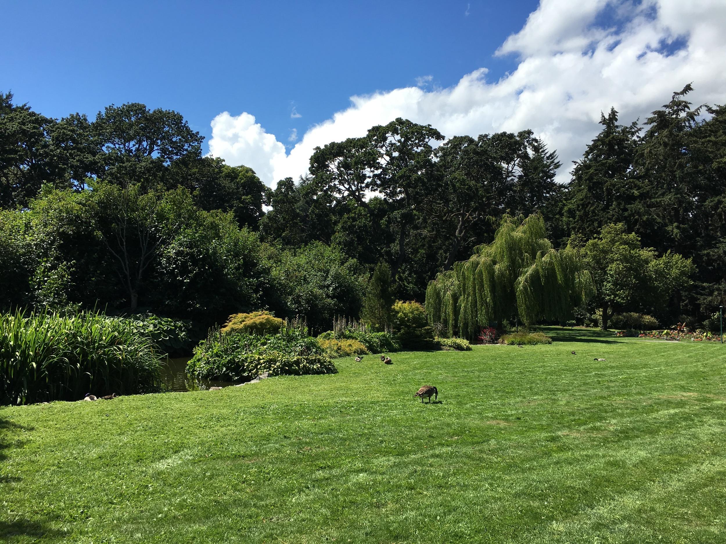 beacon-hill-park-victoria