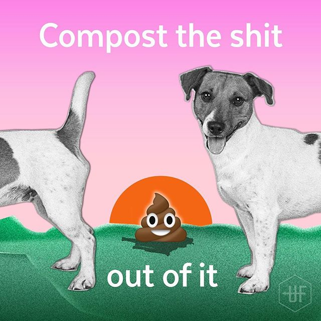 WHY IT'S FUCKED: 38% of Australian households own a dog. Dogs do 180 kilos of shit a year. A bulk of that gets wrapped in plastic bags and the maths on that equals a fuckton going into landfill. Not to mention, dog turds on the street get washed into our waterways, and those smelly piles are a potential hazard for our health.  CHANGE ONE THING: Compost your animal shit. It can be composted in a separate inground dog turd bin in your backyard along with leaves, grass and other organic waste. Most of the nasty dog bacteria gets heated up and killed. Just don't use it on food you're growing to eat! . Check out the #ensopet dog composter, or take a look at the great DIY video on @thegreenhub_  blog 💩 Read more via the link in our bio☝️