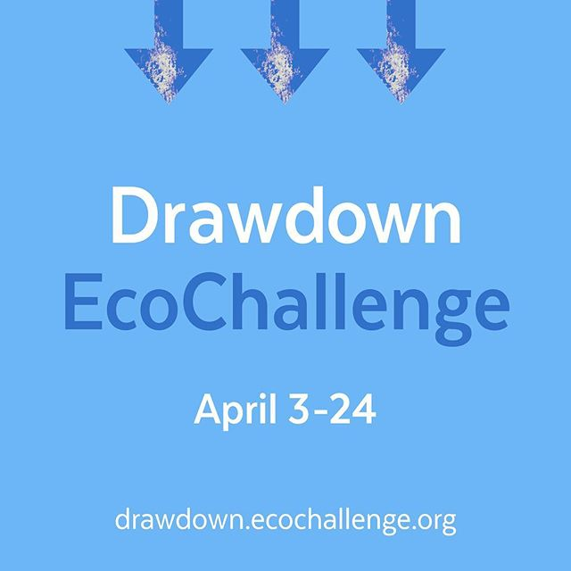 We've posted about @projectdrawdown before, but if you've forgotten, it's a website and book dedicated to the top 100 solutions for global warming. They have an Eco Challenge from April 3-24. The challenge is free and is focused on how individuals can contribute to carbon reduction. There are a shitload of easy things to choose from. Even if you don't do it, it's pretty great inspiration for everyday life. Follow the link at the top of our bio ☝️☝️☝️ @ecochallengeorg #drawdownecochallenge