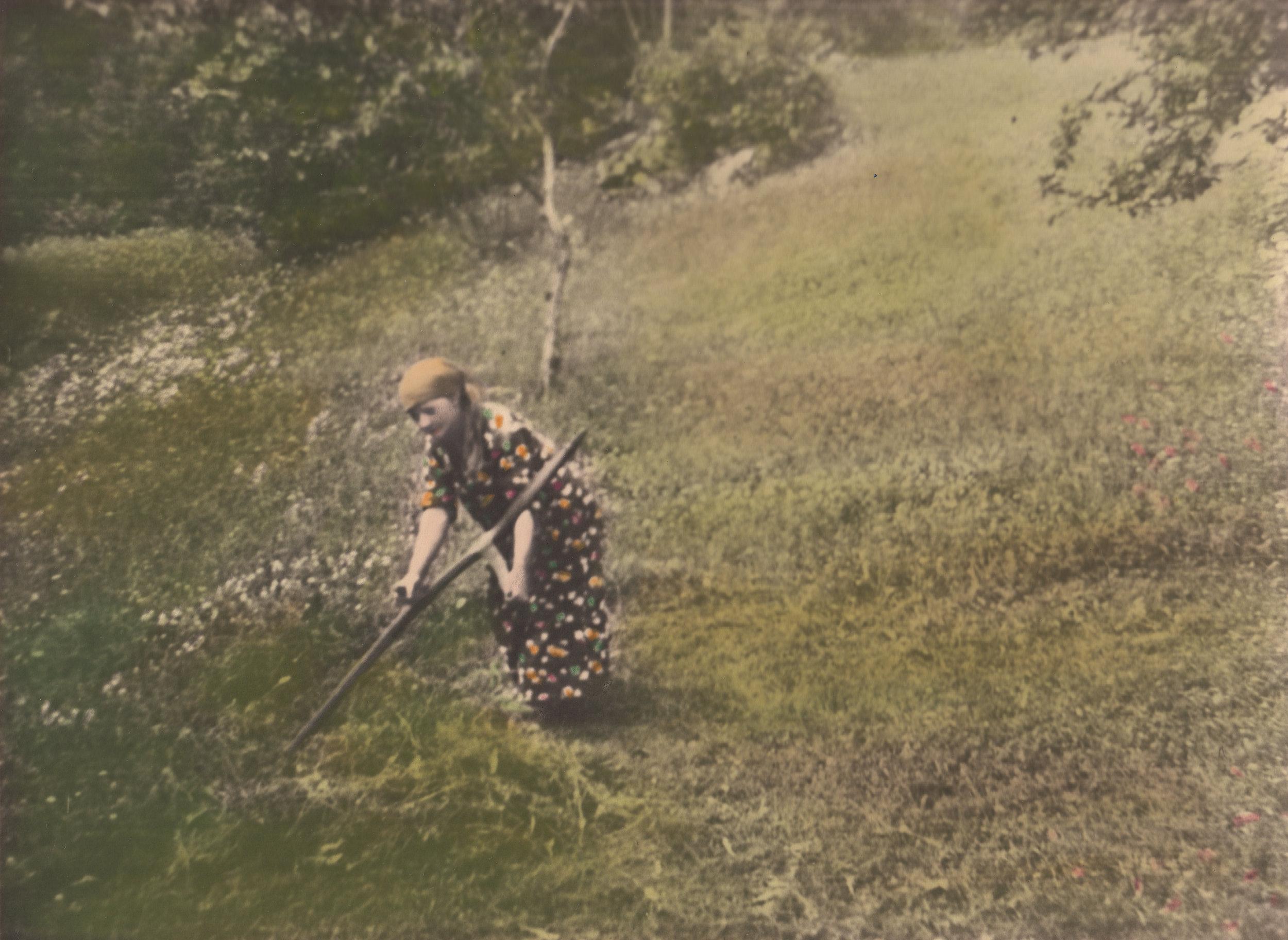 Helene Lia under slåtten rundt Husmannsplassen Melaaslia i Gjerstad, ca 1930.