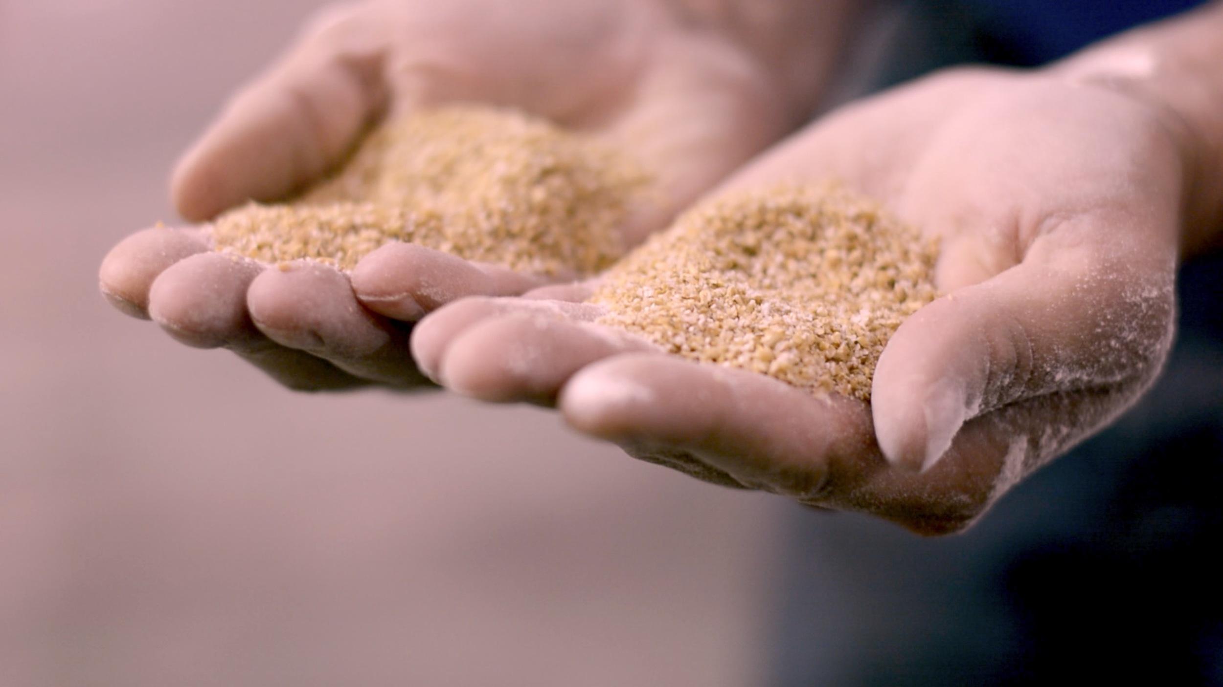 flour hands.jpg