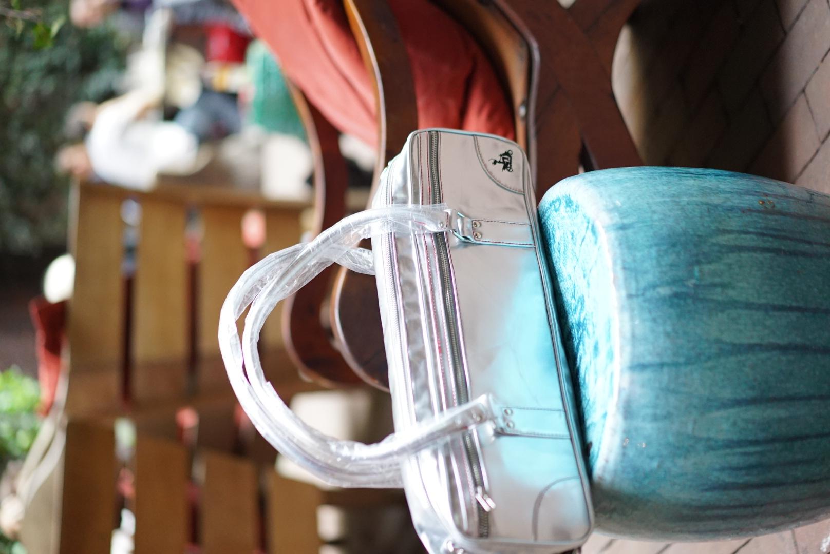 Fluter Scooter Bag.JPG