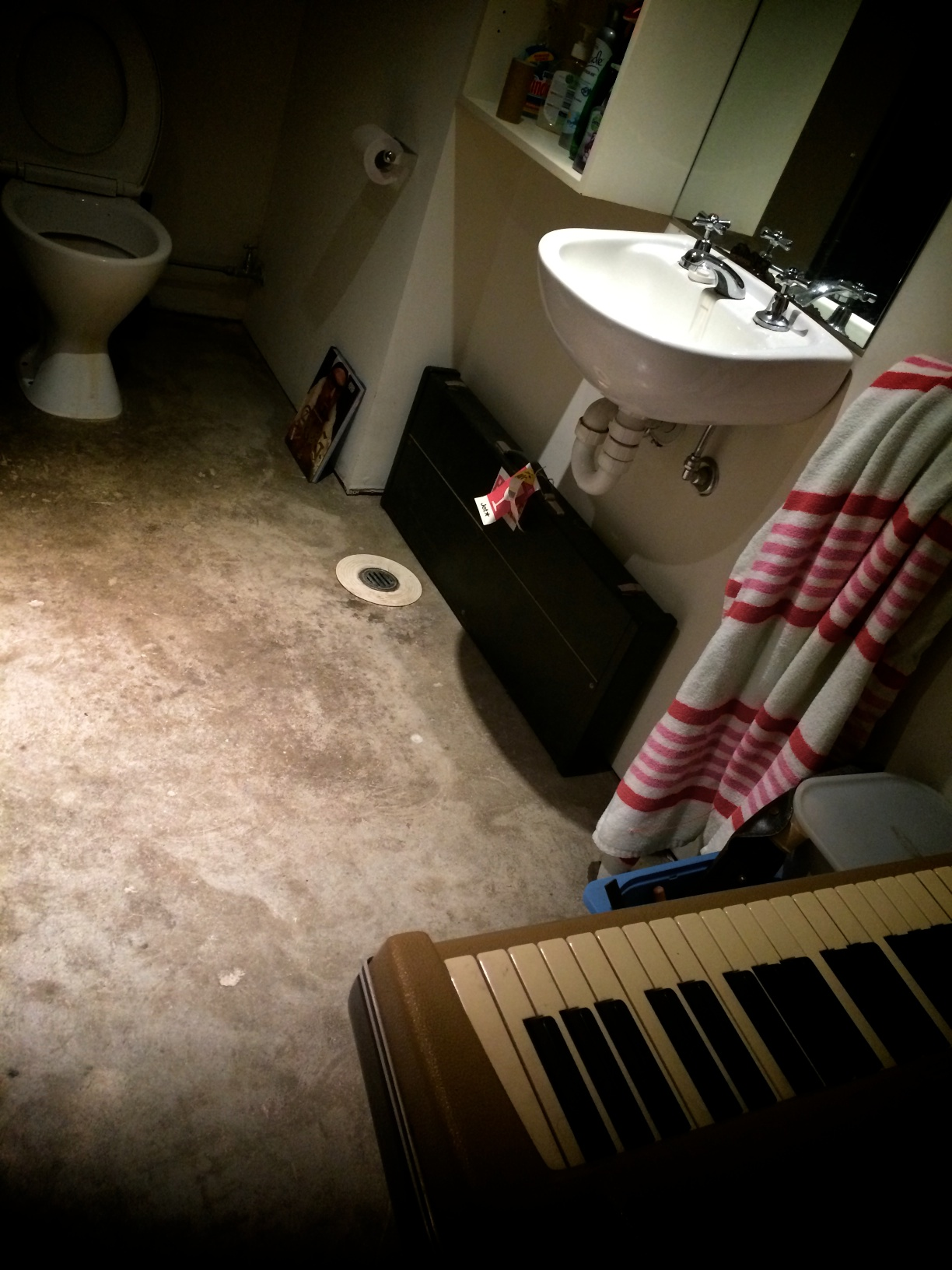 What every studio bathroom needs….jpg