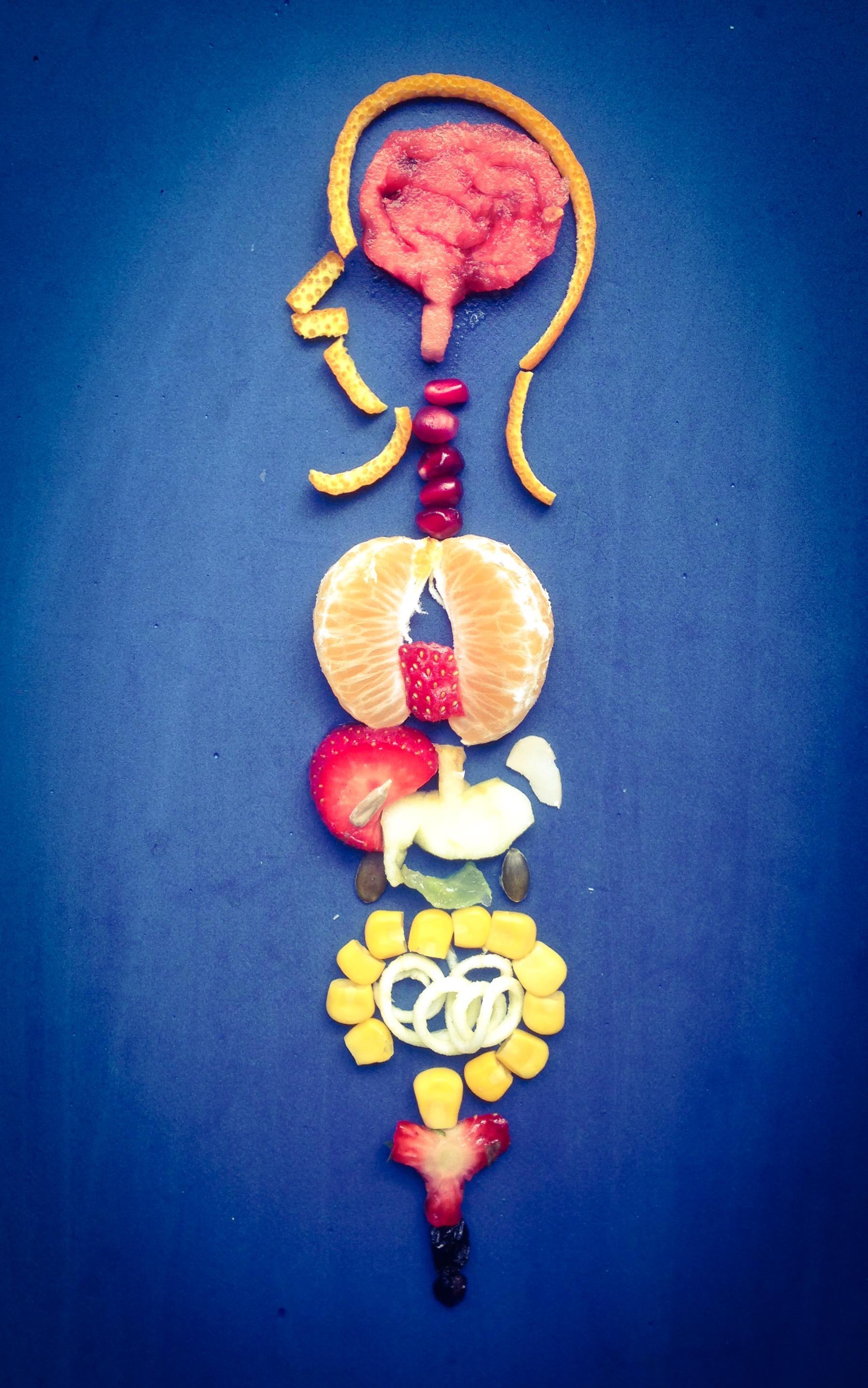 YR 4 Organs of the body.JPG