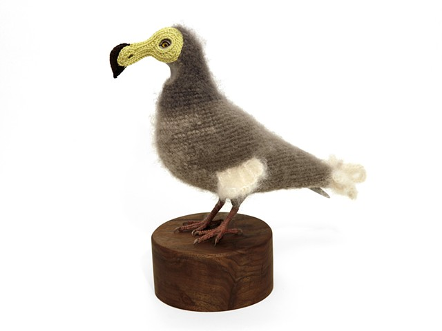 "Laurel Roth Hope,  Biodiversity Reclamation Suits for Urban Pigeons: Dodo II,  2014, crocheted yarn, handmade pigeon mannequin, walnut stand, 11 ¼"" H 11 ½"" D (beak to tail) 7"" W (across chest), Base: 5 ¼ in diameter."