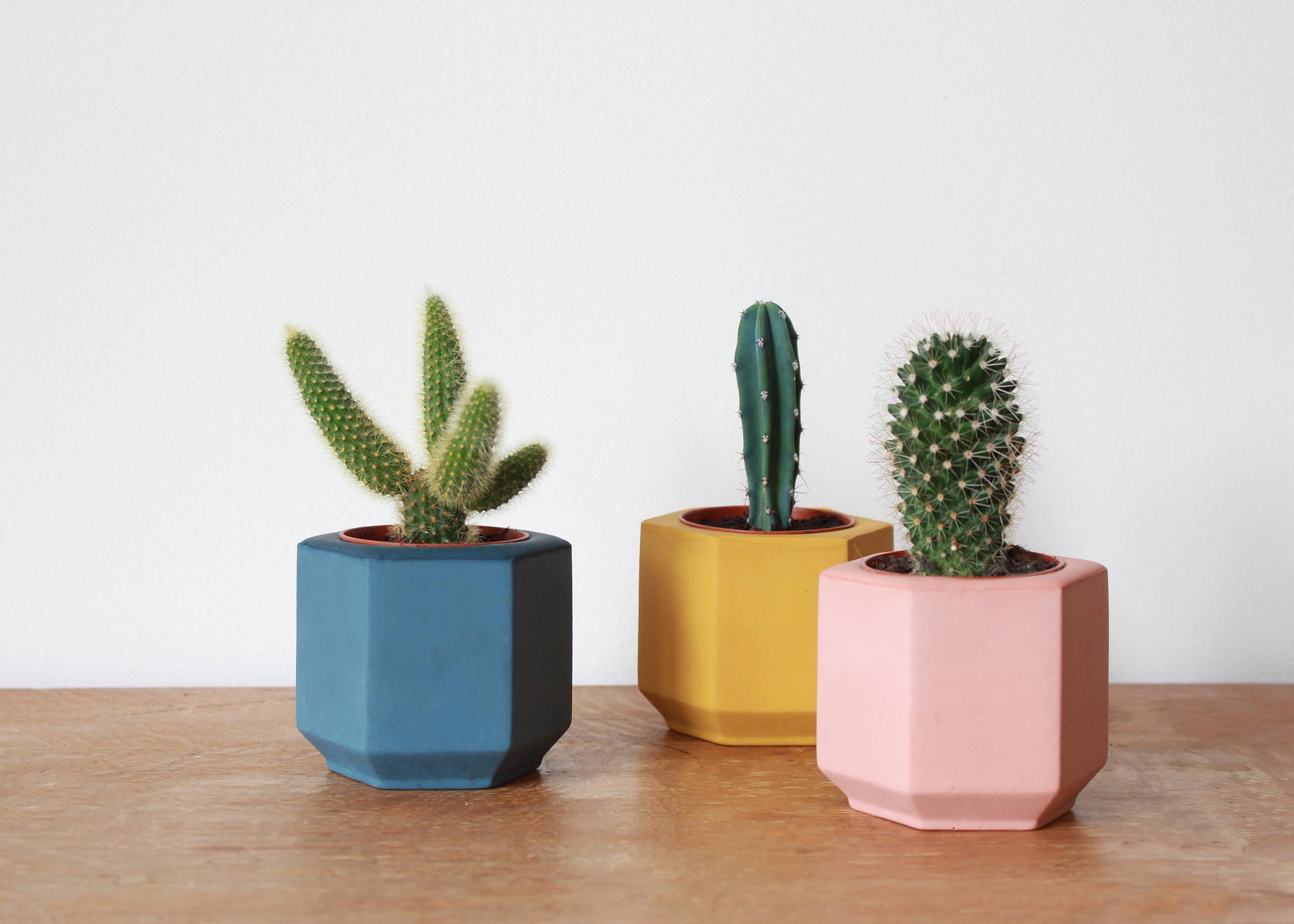Set of Three Small Colored Hexagon Planters