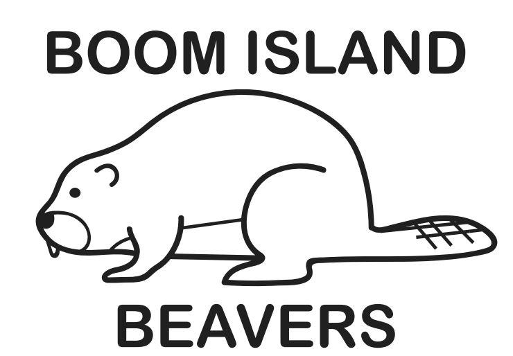 Boom Island Beavers.JPG