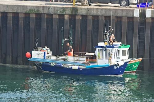 Portavogie working harbour