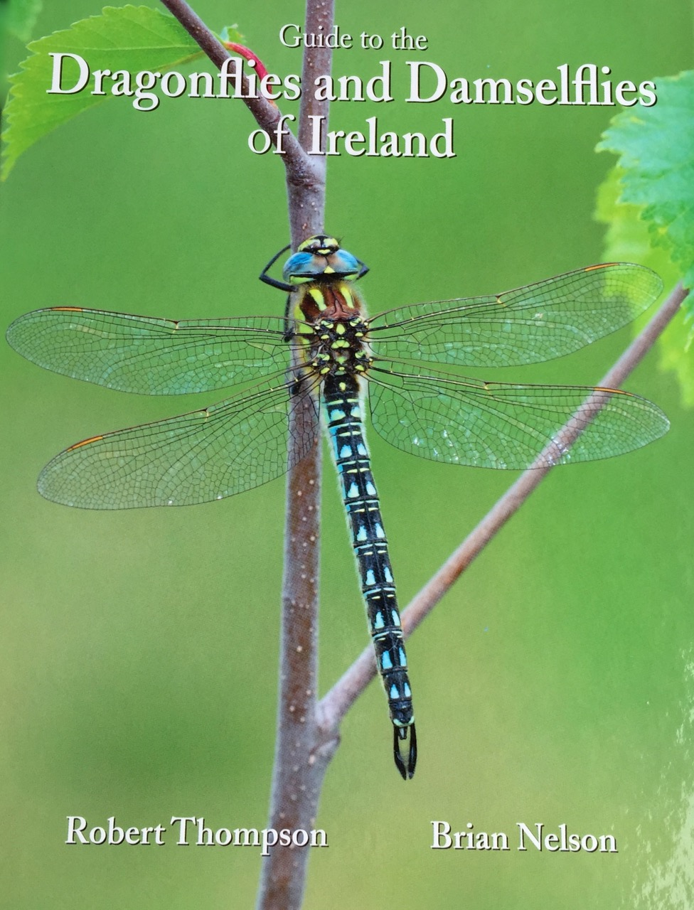 Guide to Dragonflies and Damselflies of Ireland, Robert Thompson, Brian Nelson