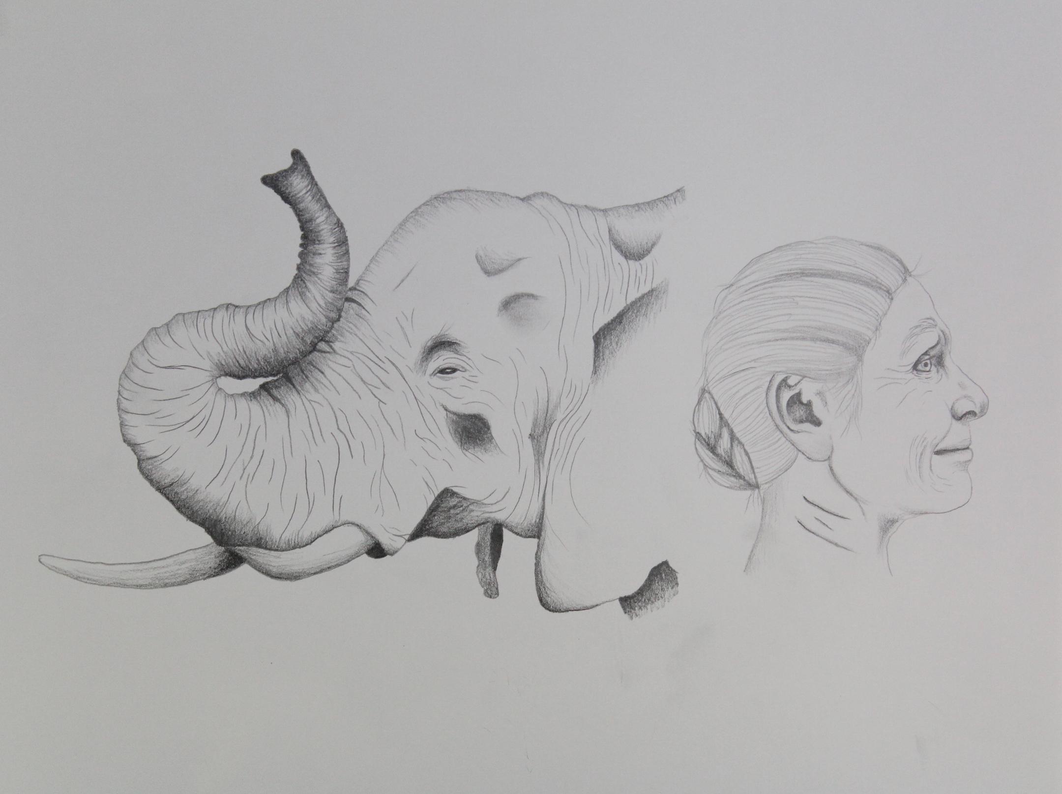 Elephant WomanJPG.JPG