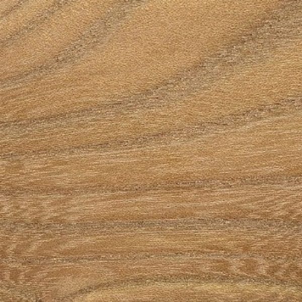 Elm - Red  4/4 - 8/4  Rustic & Better