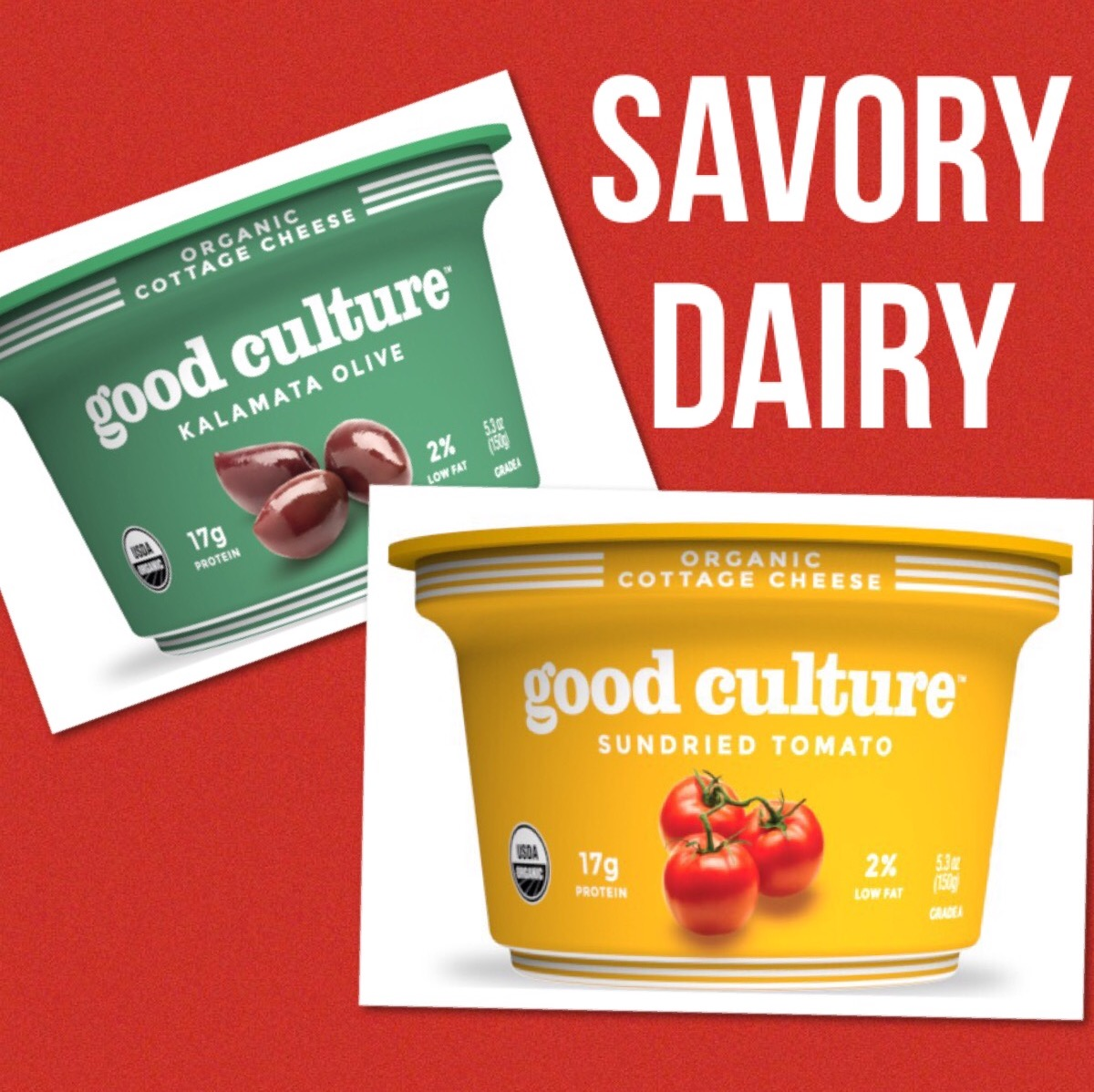 The Next Greek Yogurt: Savory Dairy | Expo West Trends | YES! Nutrition, LLC | Tori Holthaus, MS, RDN, LD