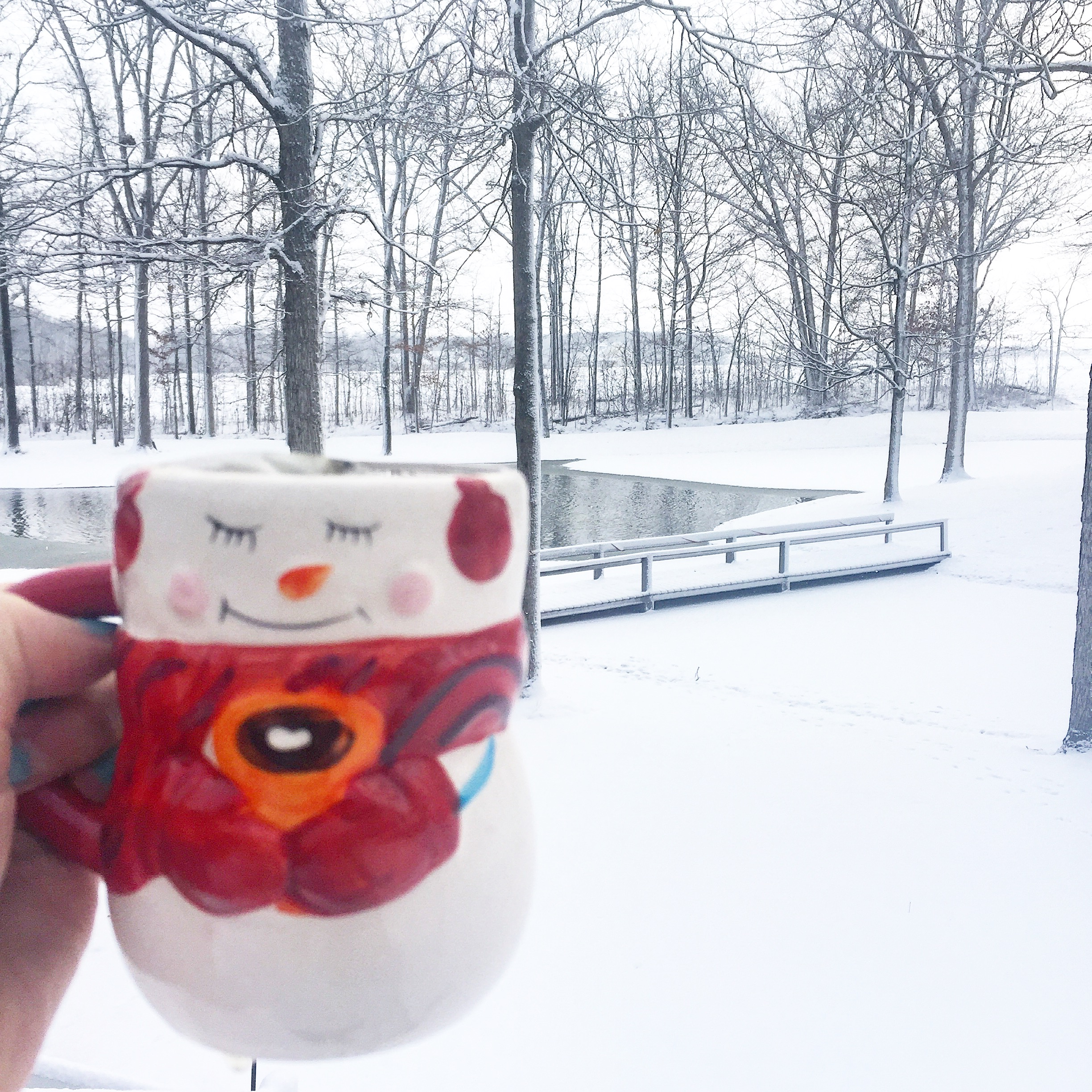 Winter Hydration: Why You Need To Pay Attention & How You Can Achieve It | YES! Nutrition, LLC | Tori Holthaus, MS, RDN, LD
