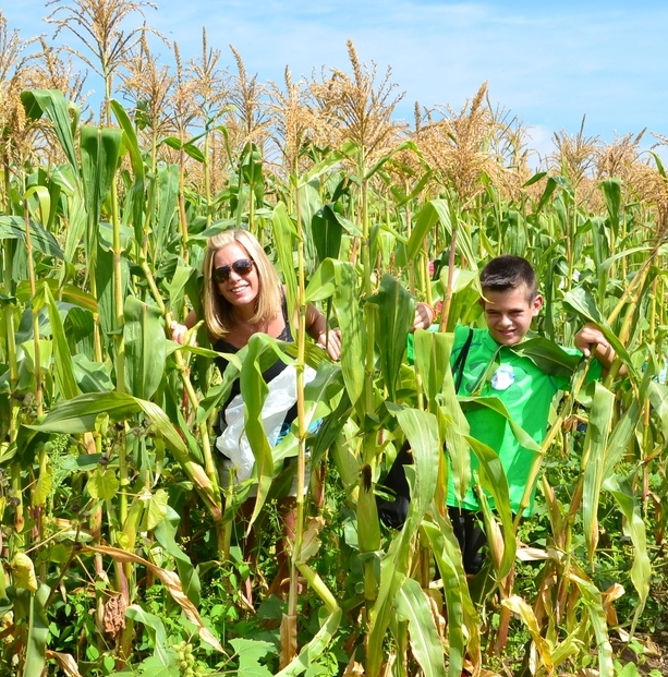 Shining Star Alex and his Mom seeking out the best corn on the farm!