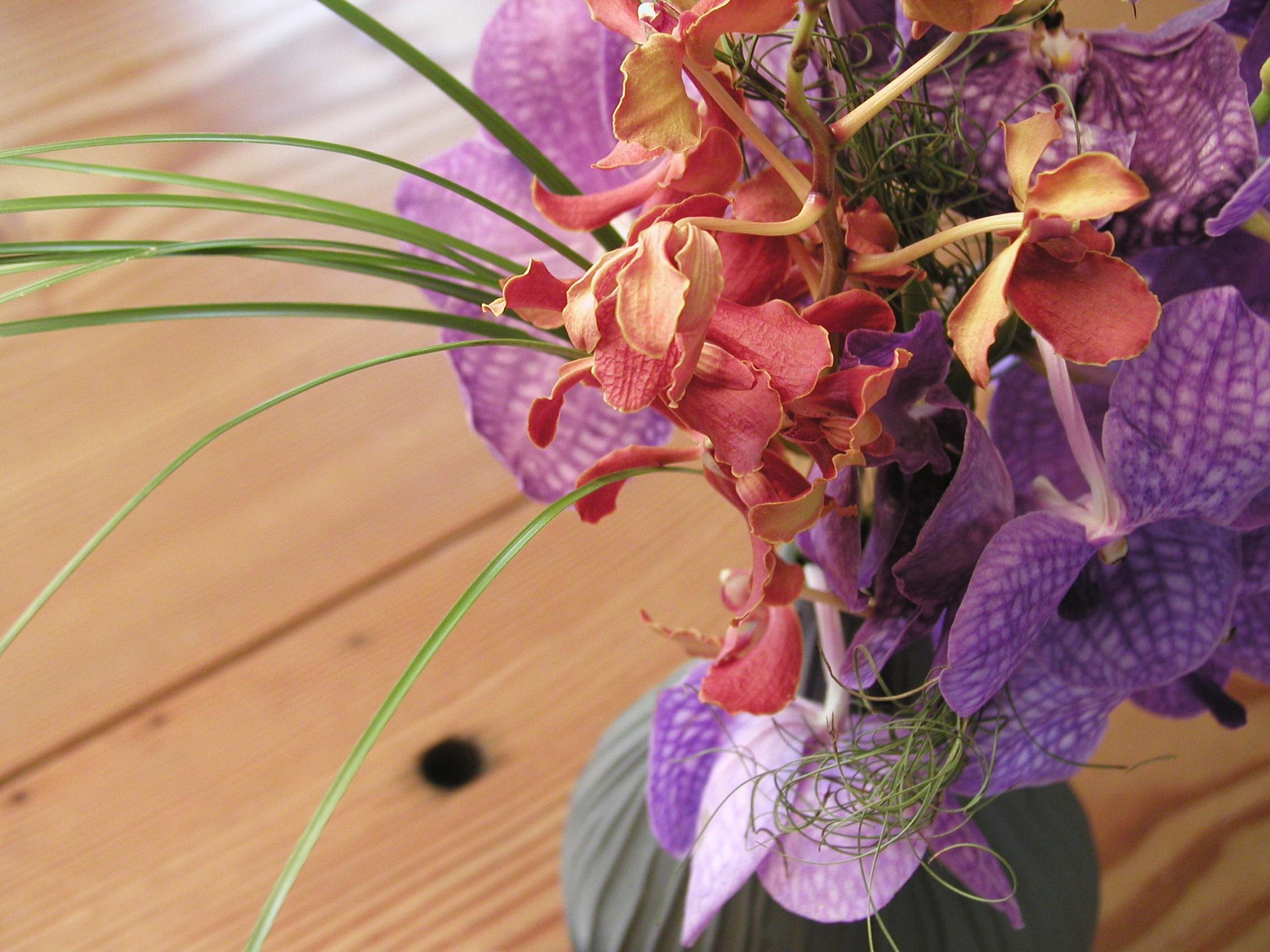 video-flowers 008.jpg