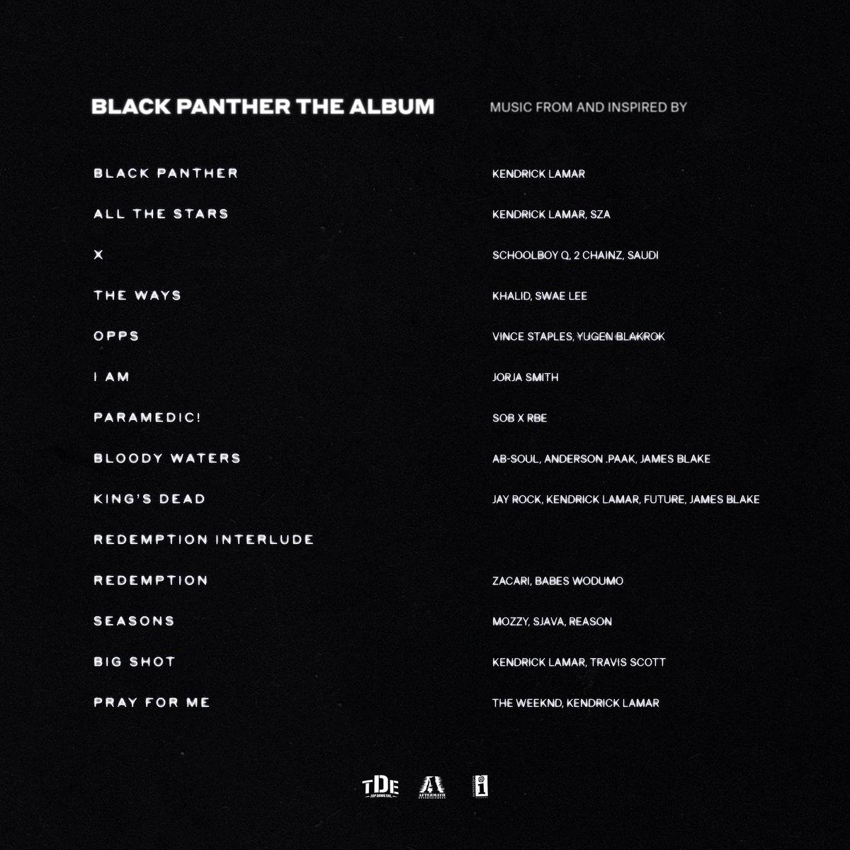 Black Panther back cover.jpg
