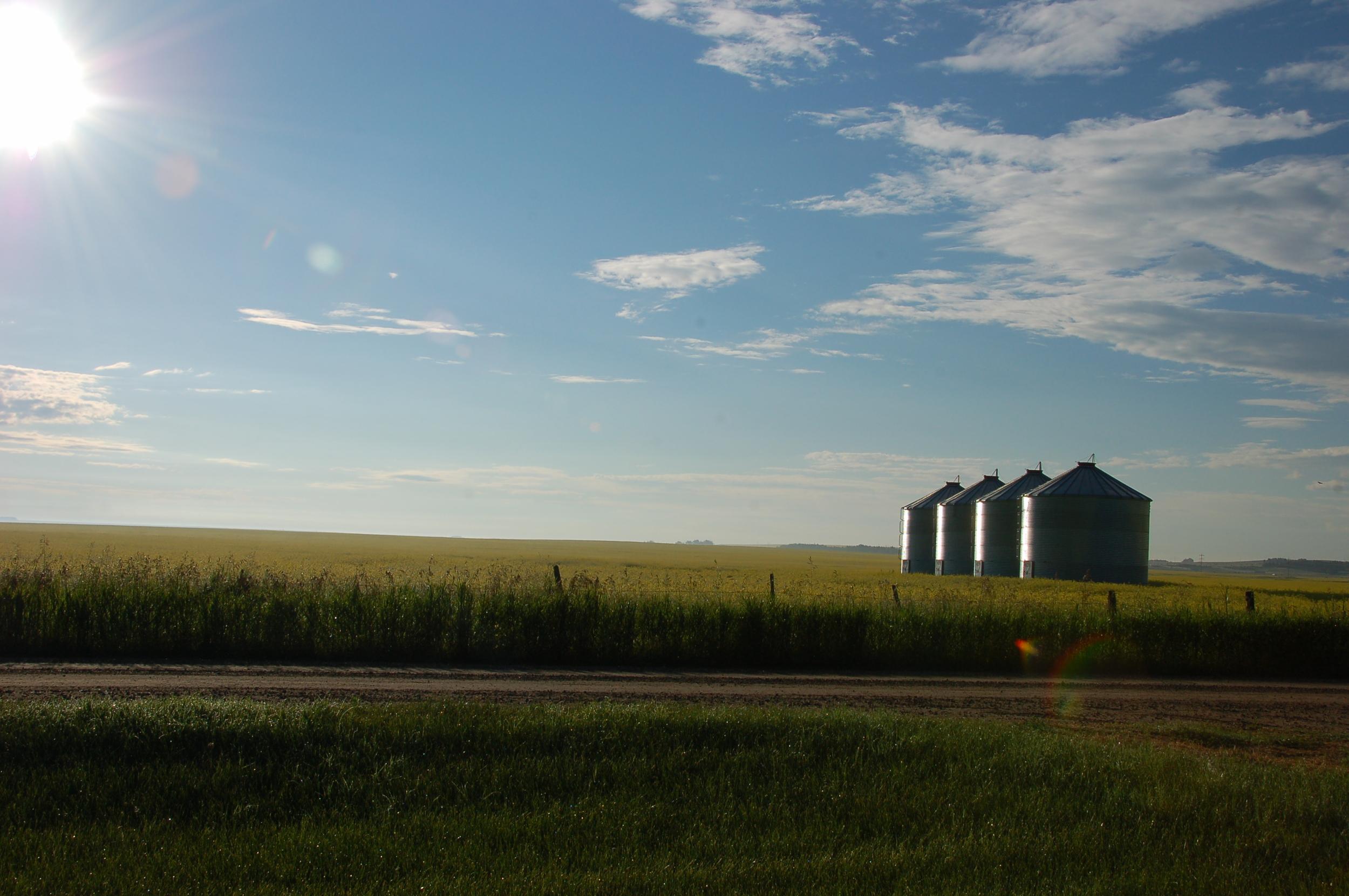 Farm Appraisals