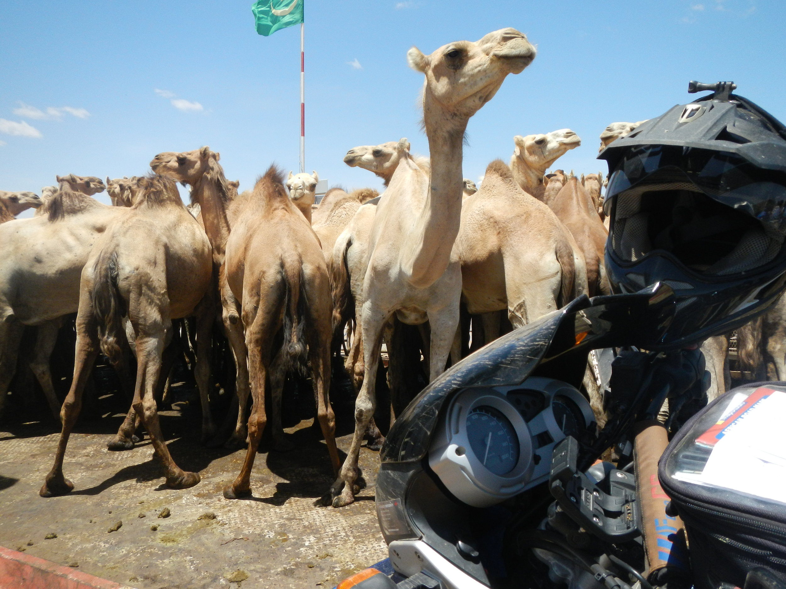 Jo-Rust-Adventure-Rider-Radio-Motorcycle-Podcast-3.JPG