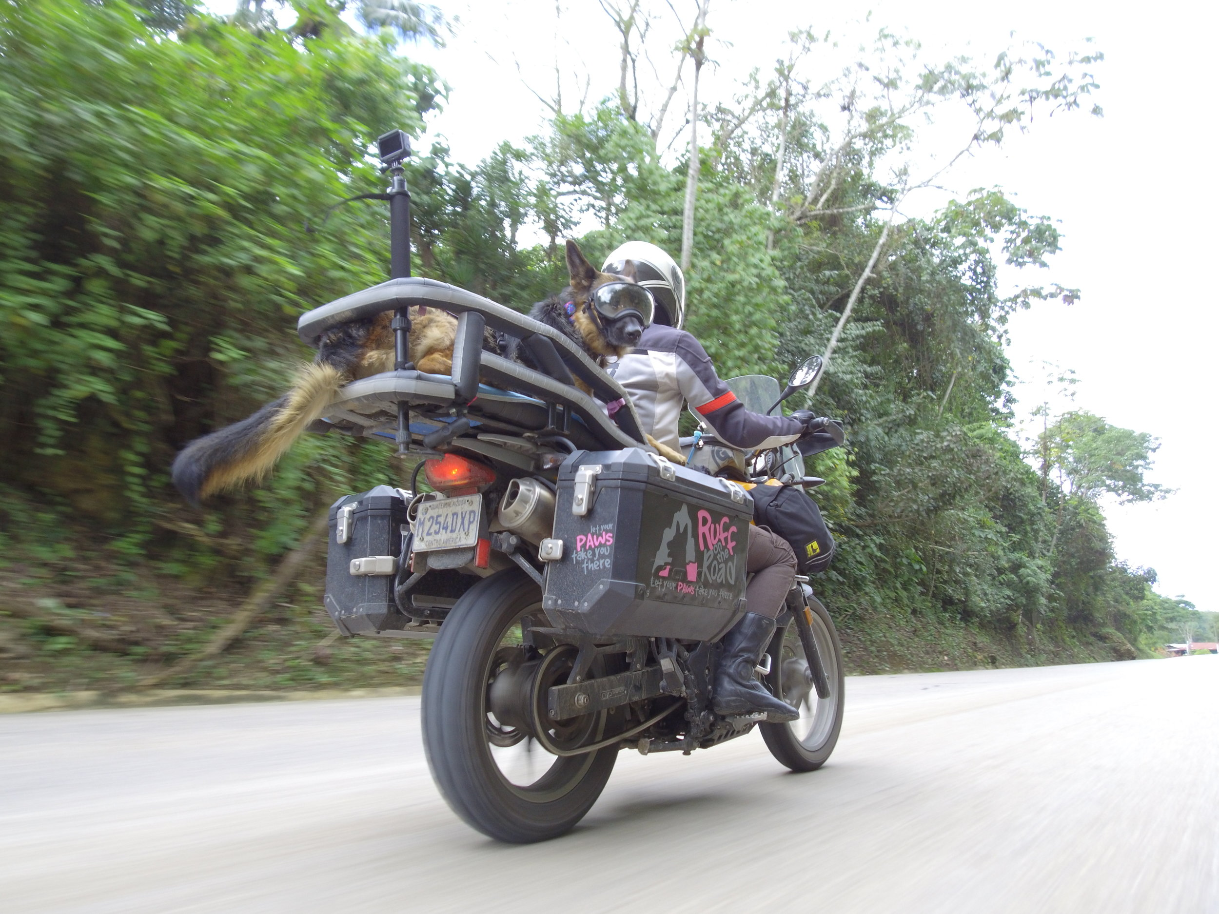 Jess-Greg-Stone-Ruff-on-the-Road-dog-adventure-rider-radio-motorcycle-podcast-4.jpeg