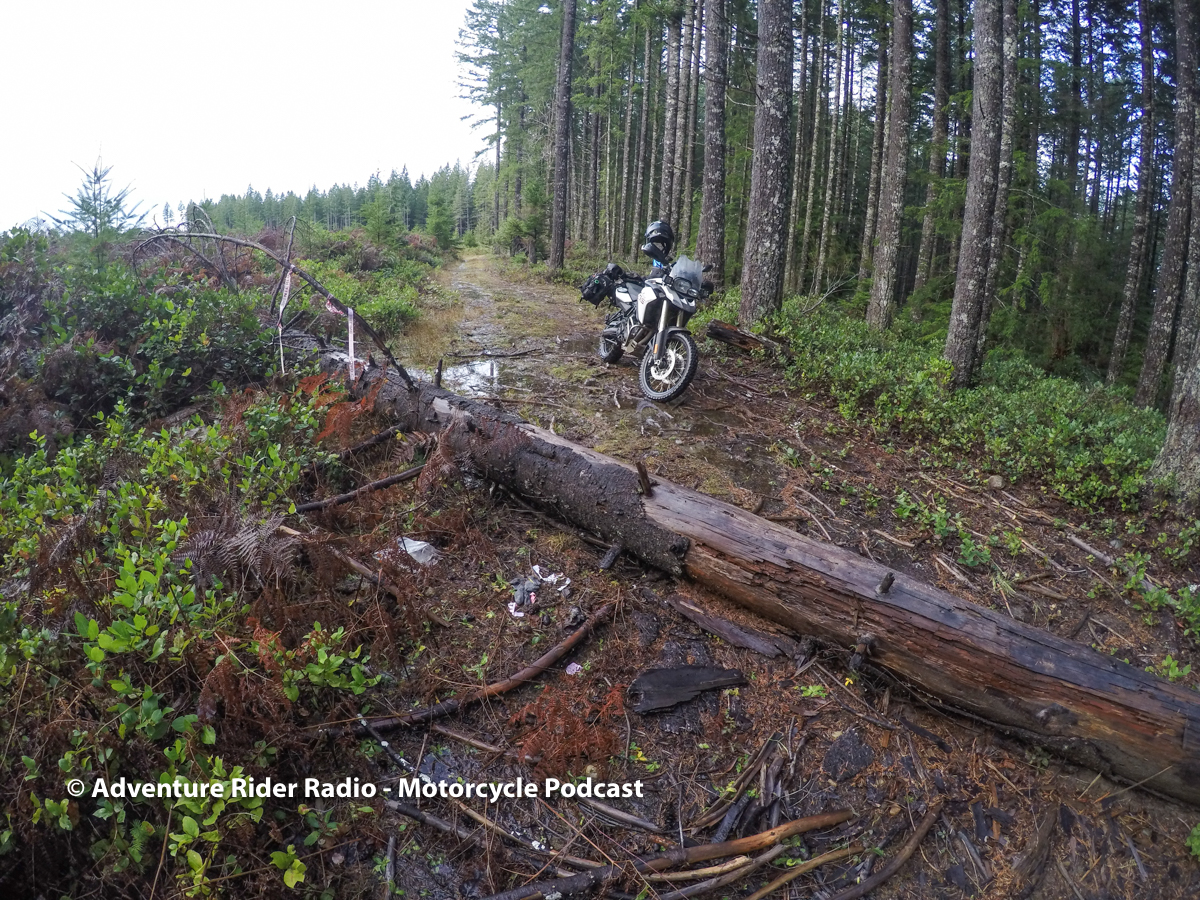 Logs on an oblique angle must be approached at right angles. Meaning you have to align your bike to cross directly over - not at an angle.