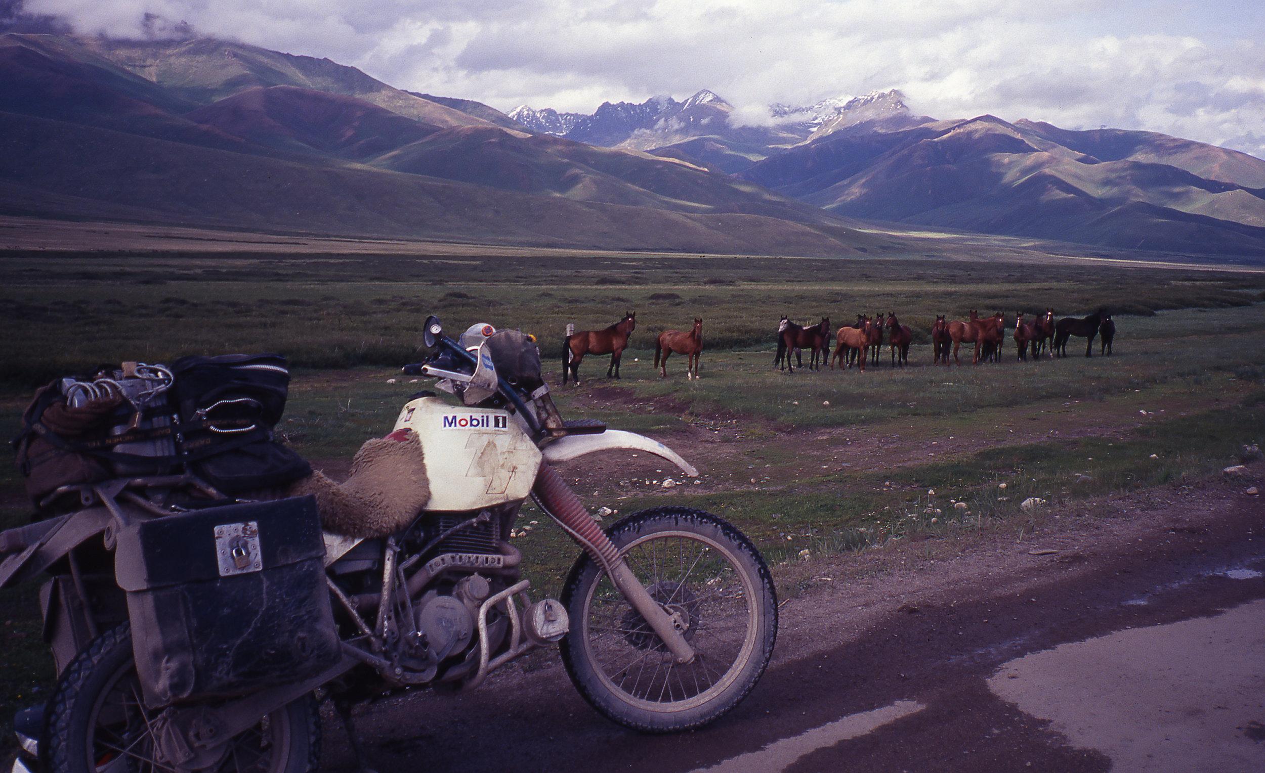 Heather-Ellis-Adventure-Rider-Radio-Motorcycle-Podcast-5.jpg