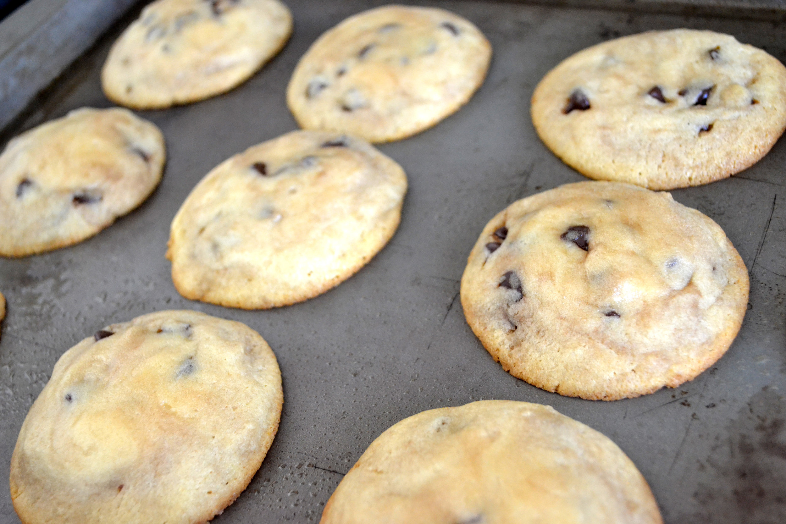 Warm and crispy cookies out of the oven.