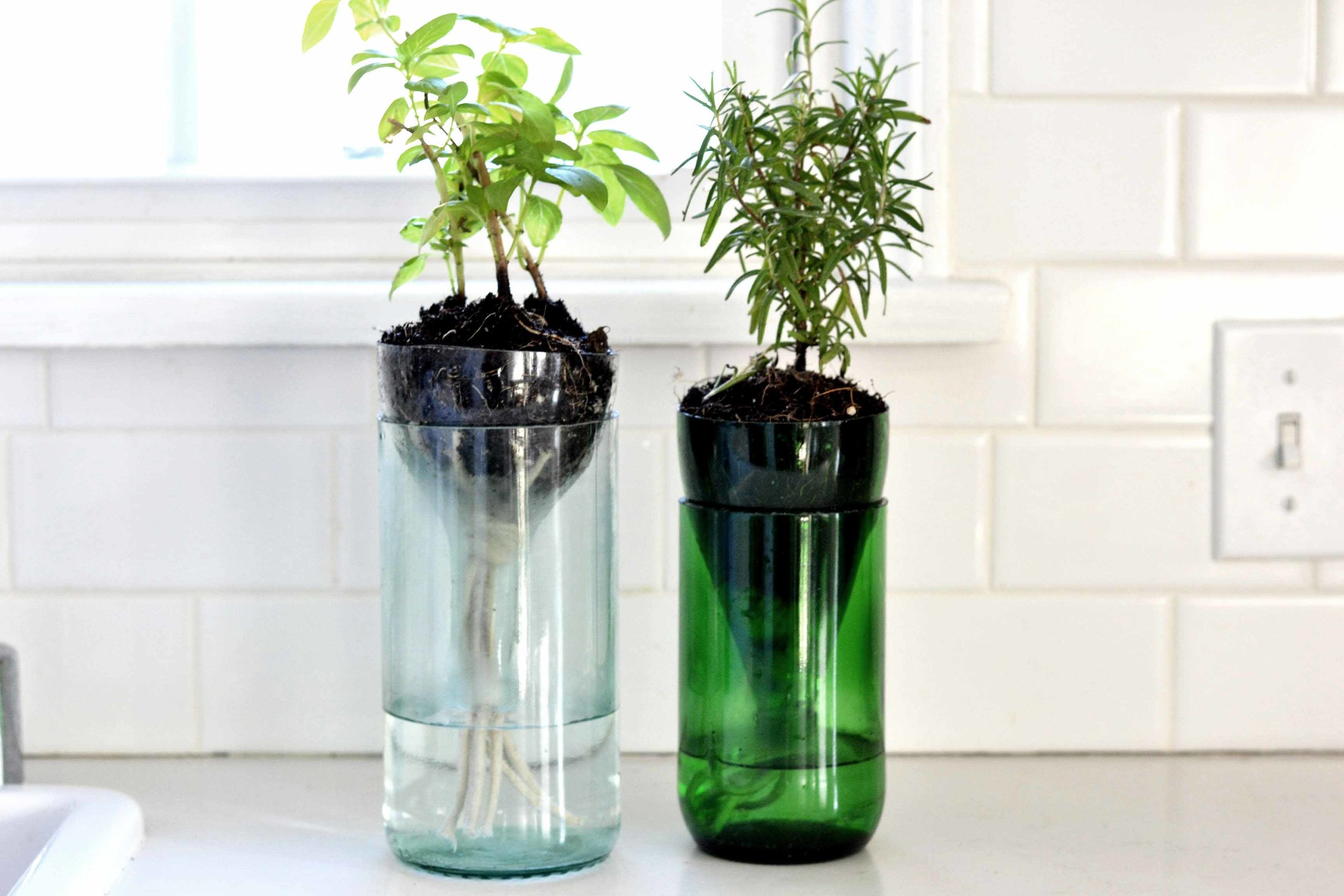DIY #3 - Self-watering Herb GardenThis last diy is probably my fave. It's a self-watering herb garden. It includes both parts of the bottle for zero waste. You could even use a plastic bottle for this one.