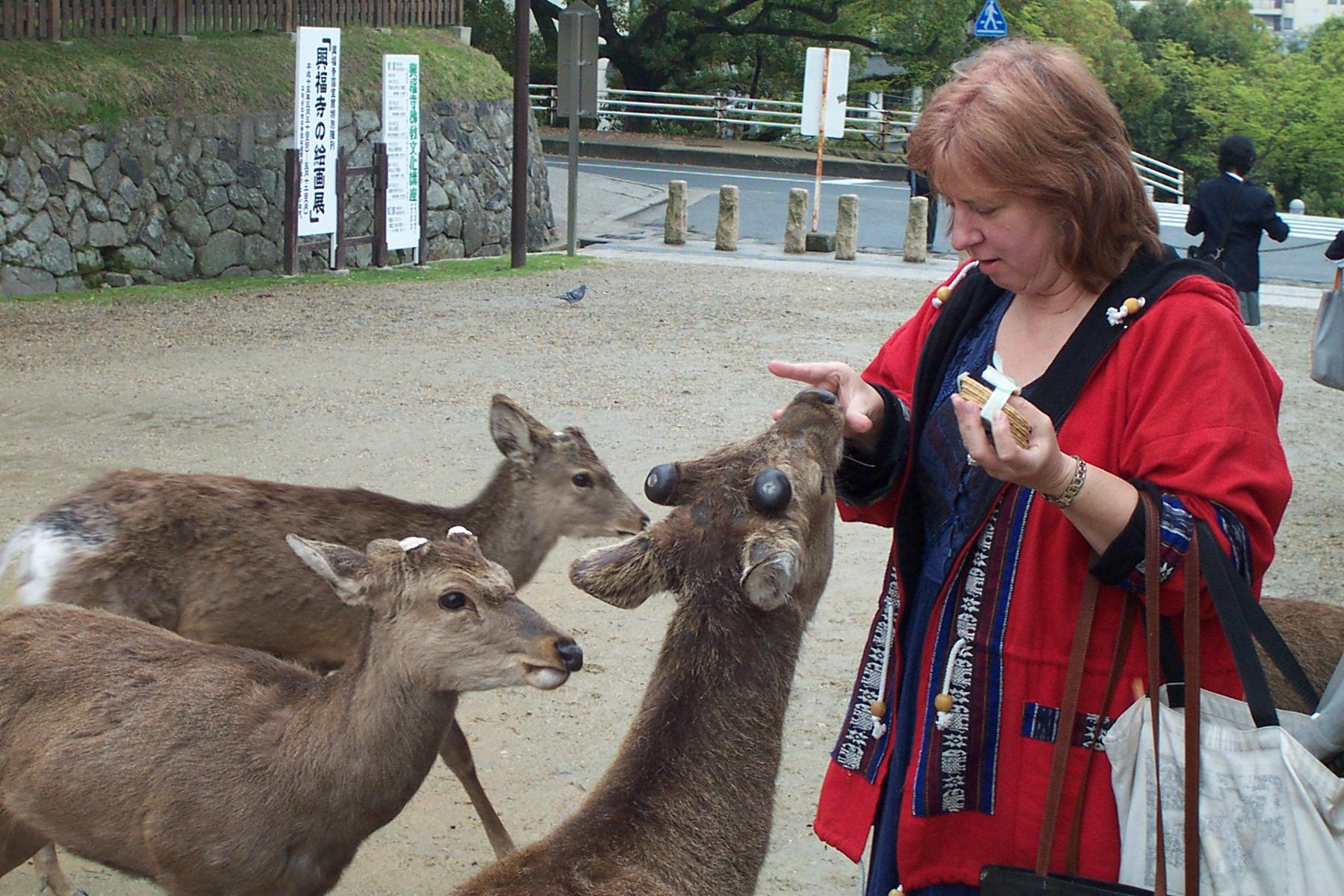 Nara and Kyoto 020.jpg