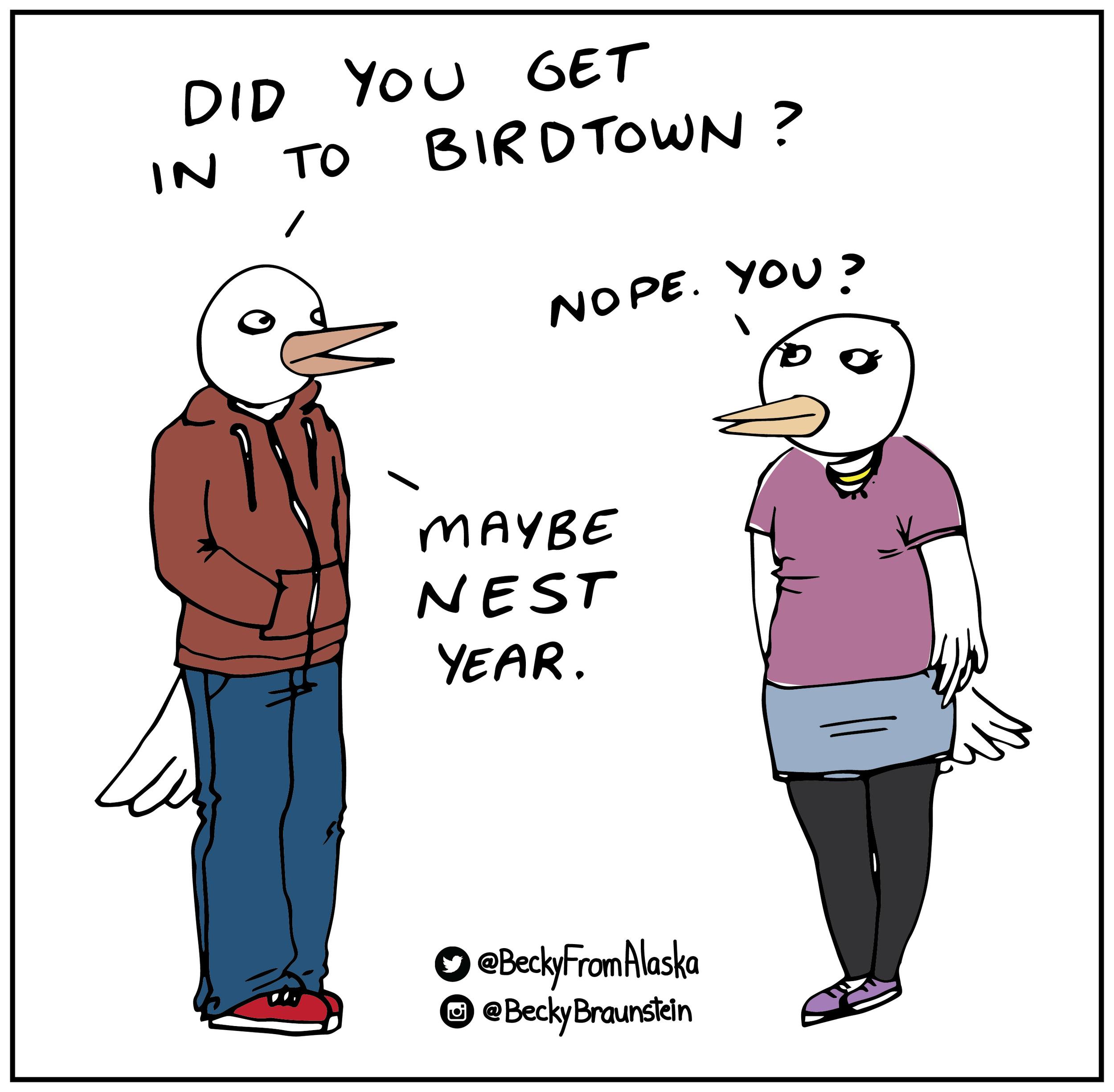 Bird Town-01.jpg