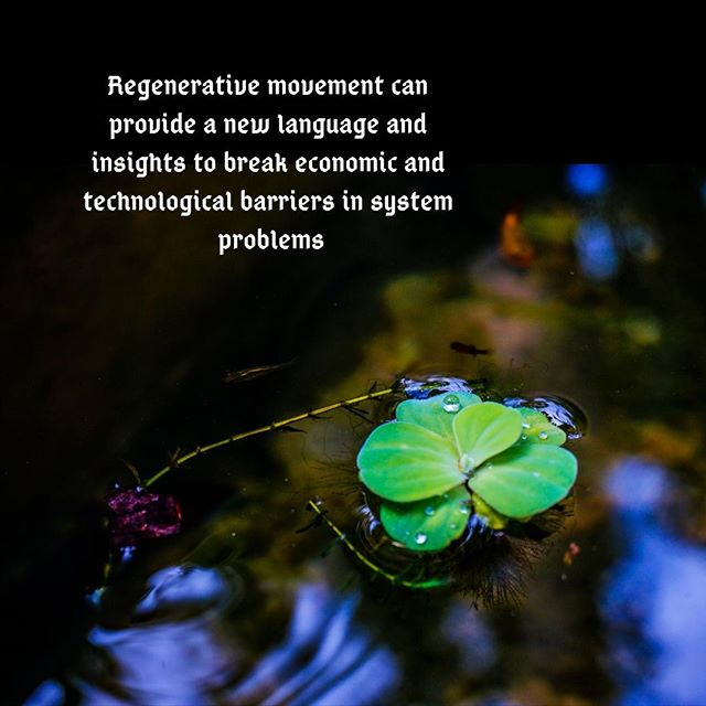 Going beyond sustainability, the regenerative movement crafts new language and insights to address economic and technological barriers within food and other ecological systems.  Check out this interview: http://ow.ly/A4M330mkD99