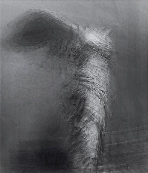 20_Goddes_Nike_of_Samothrace_Louvre_Marco_Guerra copy.jpg