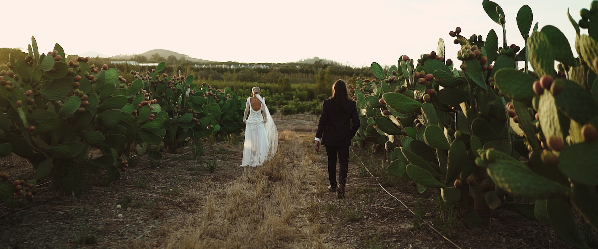 HeathEmelieWeddingFilm_Babylonstoren_Wedding_7.jpg