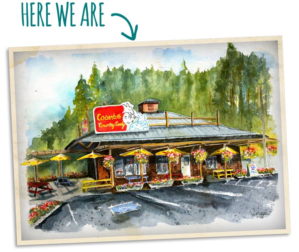 Coombs-Store-Postcard-Watercolor.png