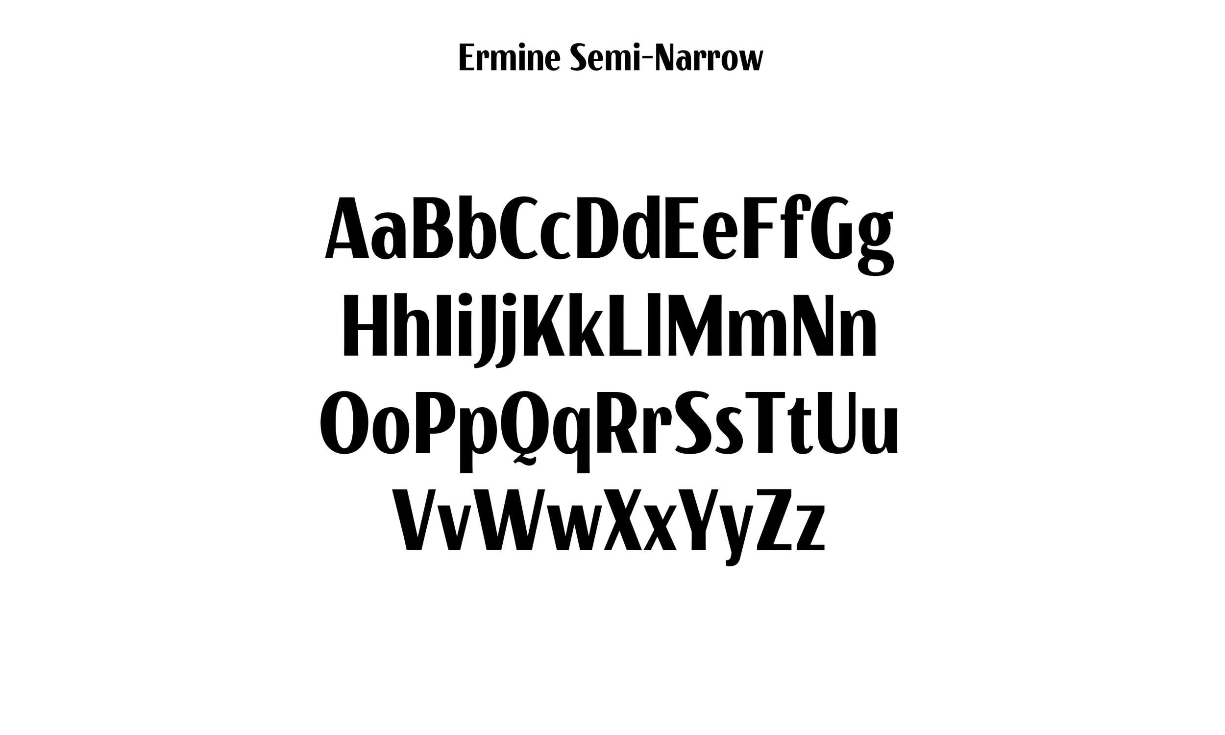 Badson_ErmineSemiNarrow_Slides4.jpg