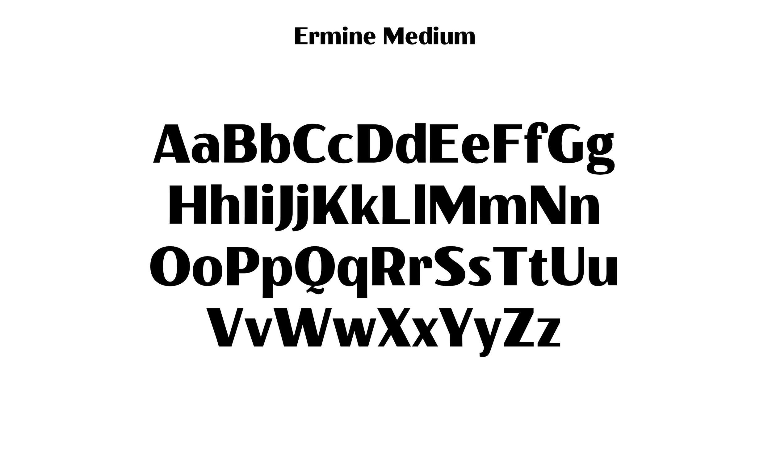 Badson_ErmineMedium_Slides4.jpg