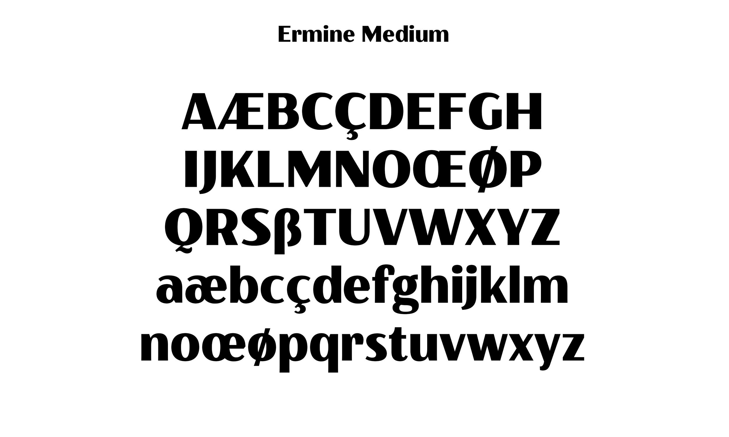 Badson_ErmineMedium_Slides5.jpg