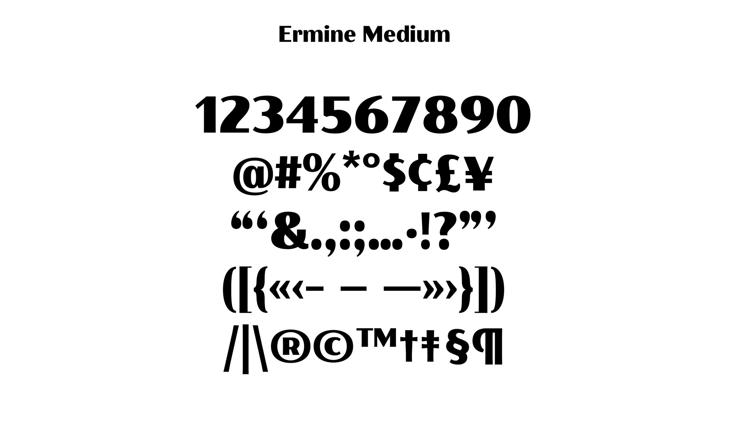 Badson_ErmineMedium_Slides7.jpg
