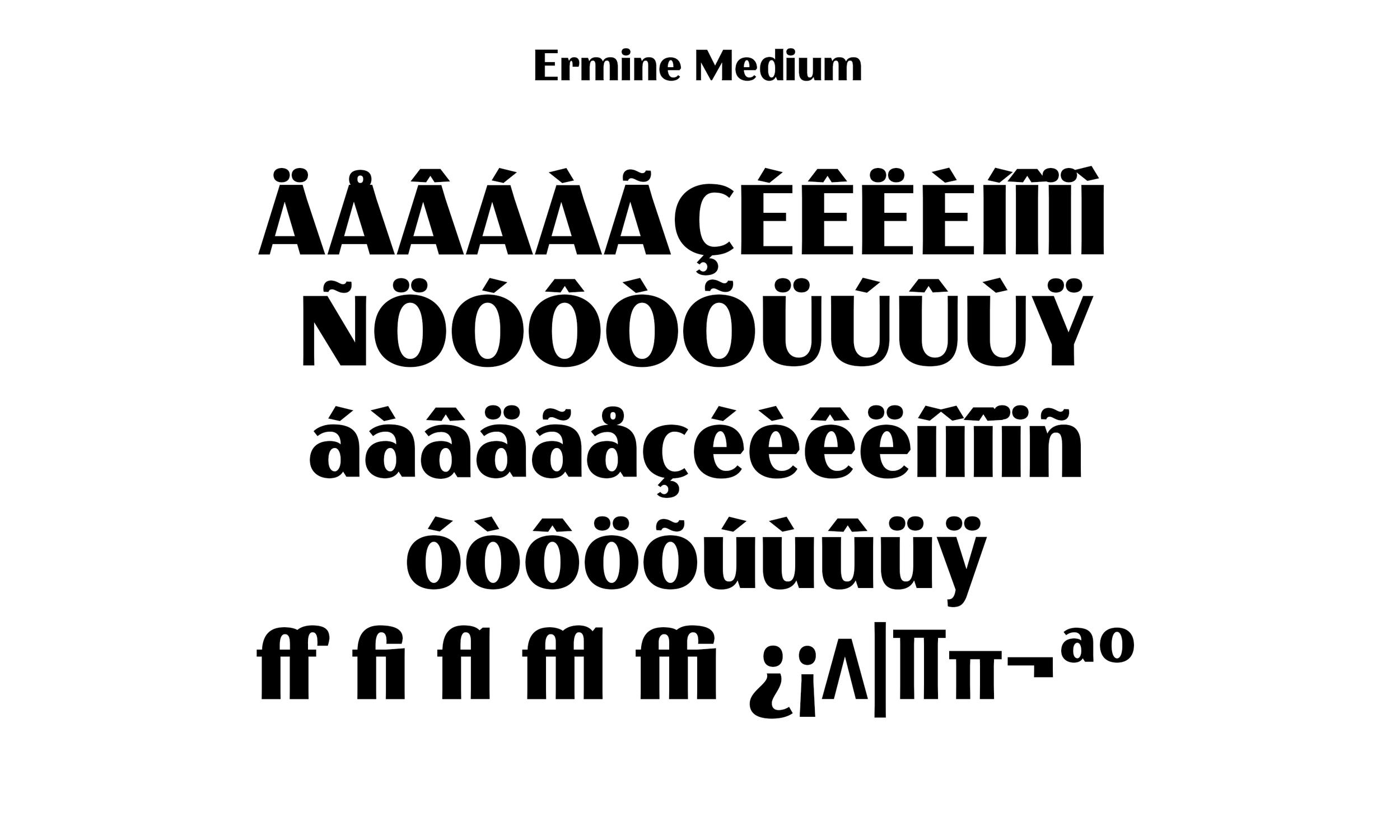 Badson_ErmineMedium_Slides6.jpg