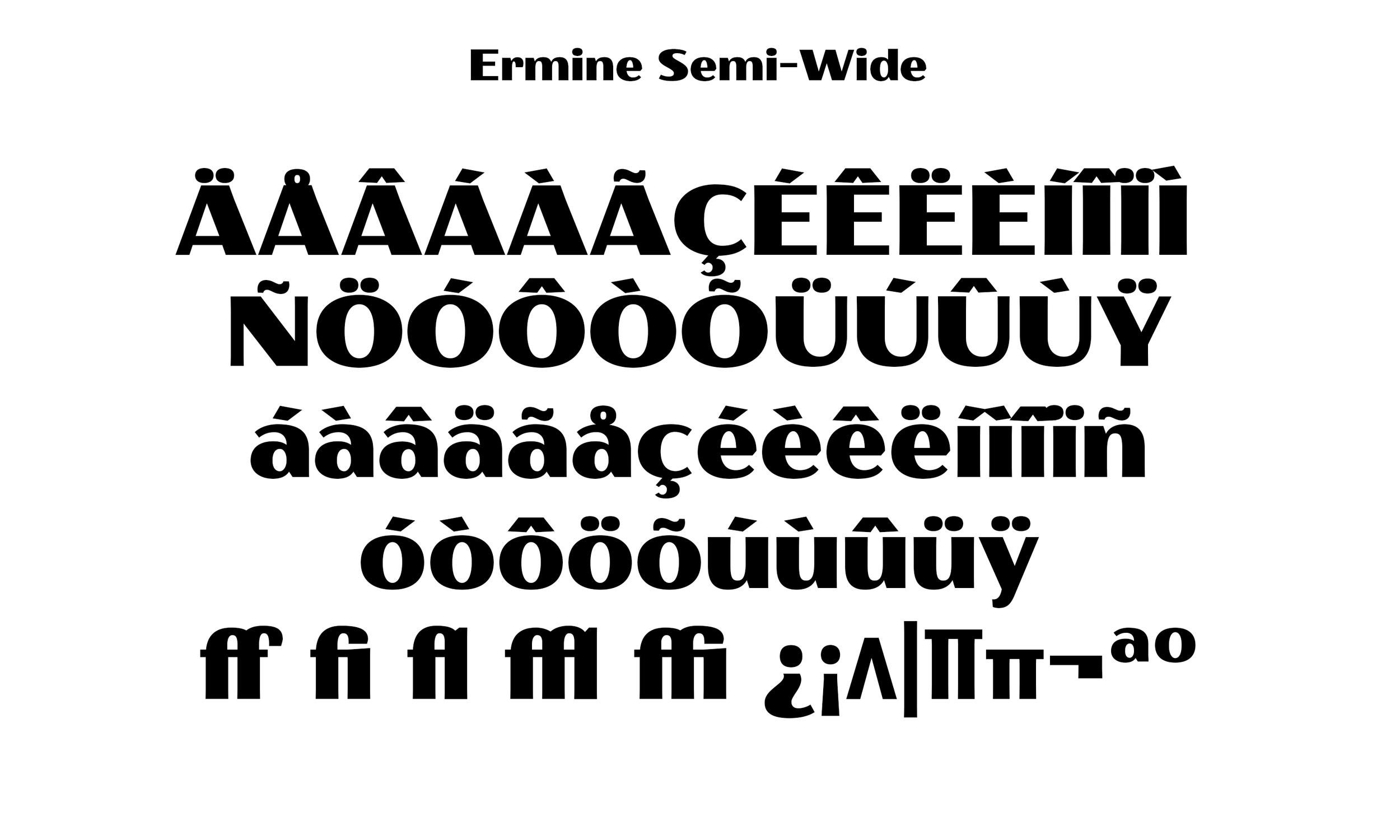 Badson_ErmineSemiWide_Slides6.jpg