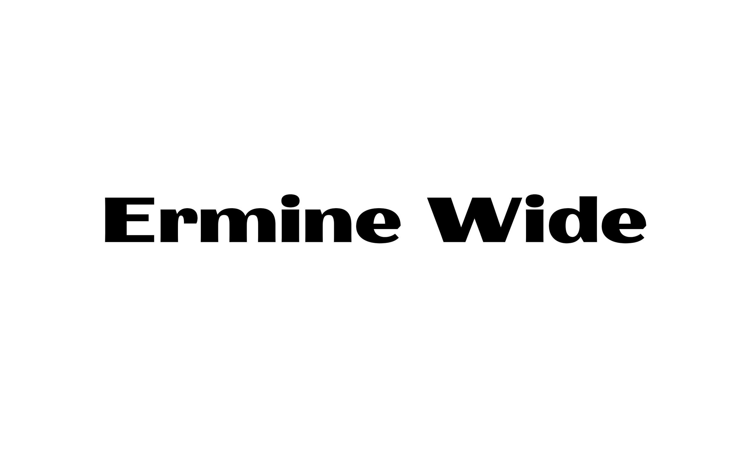 Badson_ErmineWide_Slides1.jpg