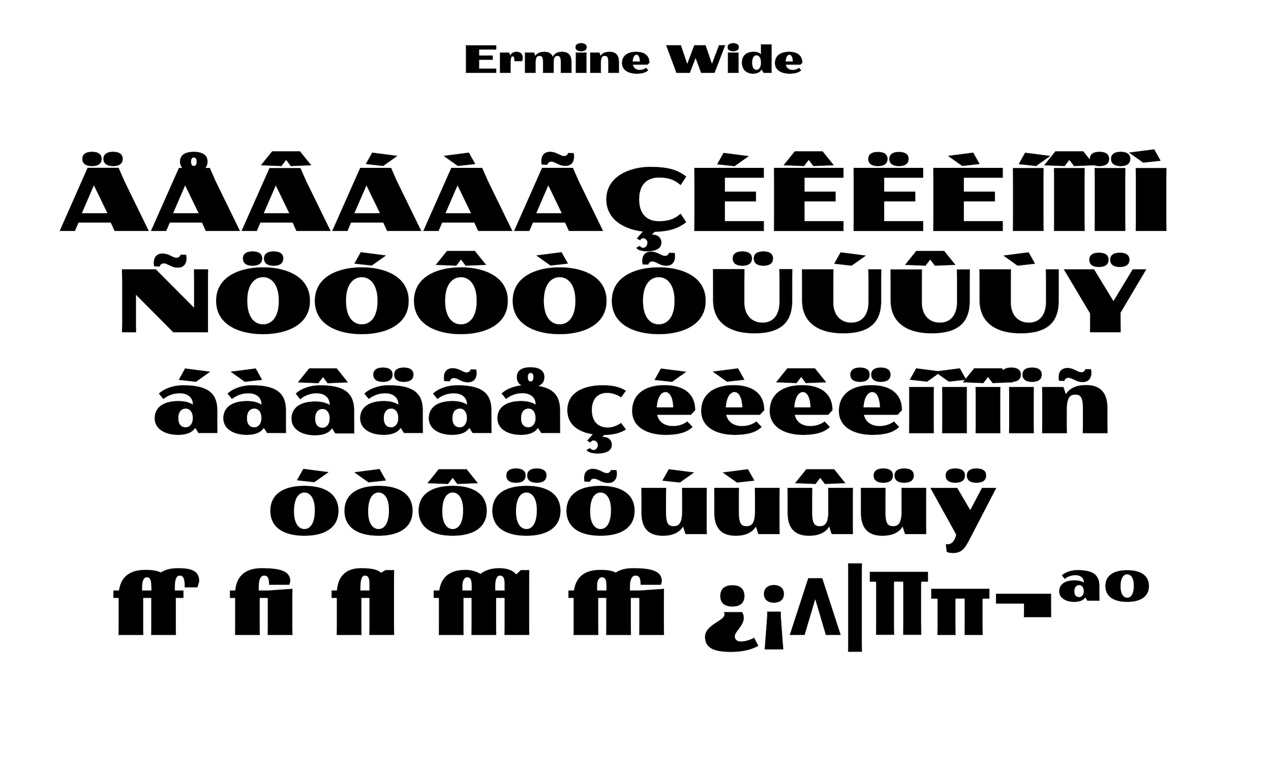 Badson_ErmineWide_Slides6.jpg