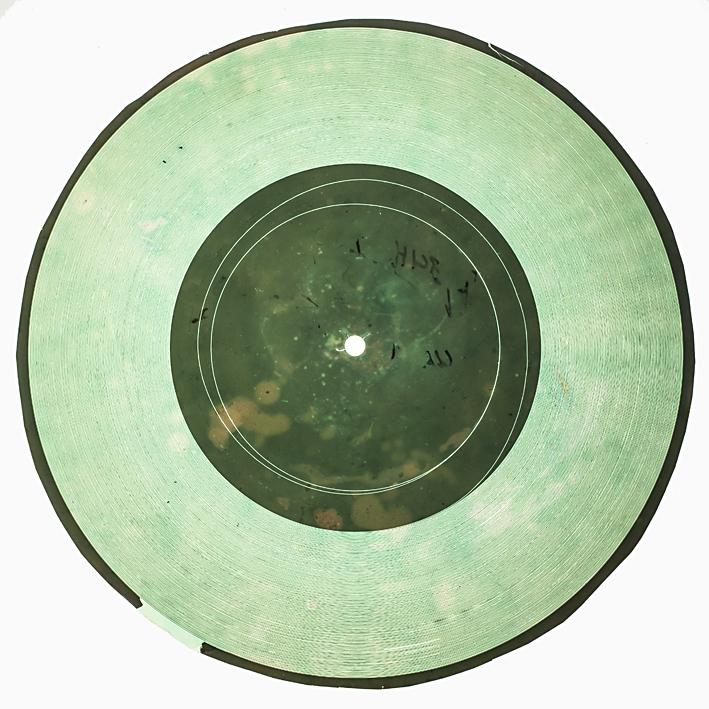 Bones Discs-4845.jpg