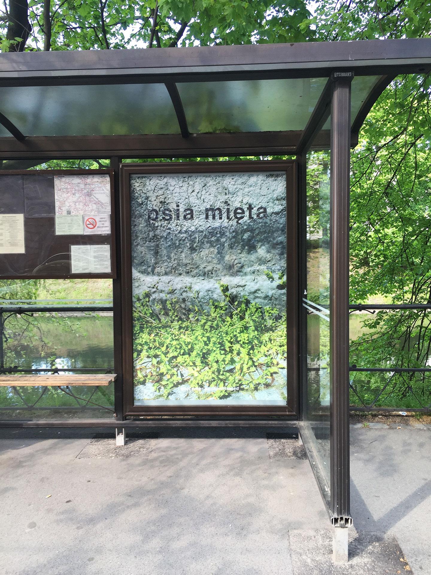 Transit shelter poster