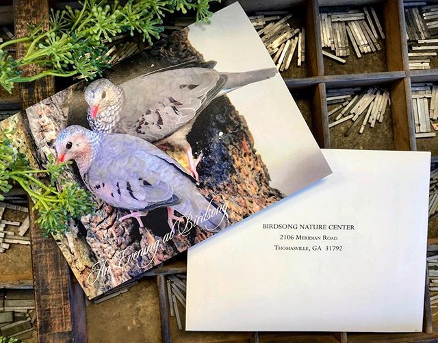 Skyline Media can help with all of your event invitation printing. Stop by our shop and check out all that we do!  1720 Smith Avenue, Thomasville, GA 🐦 🍃 . . . #thomasville #thomasvillega #invitations #printing #graphicdesign #loveourcustomers #smallbusiness #familybusiness #southga #northflorida