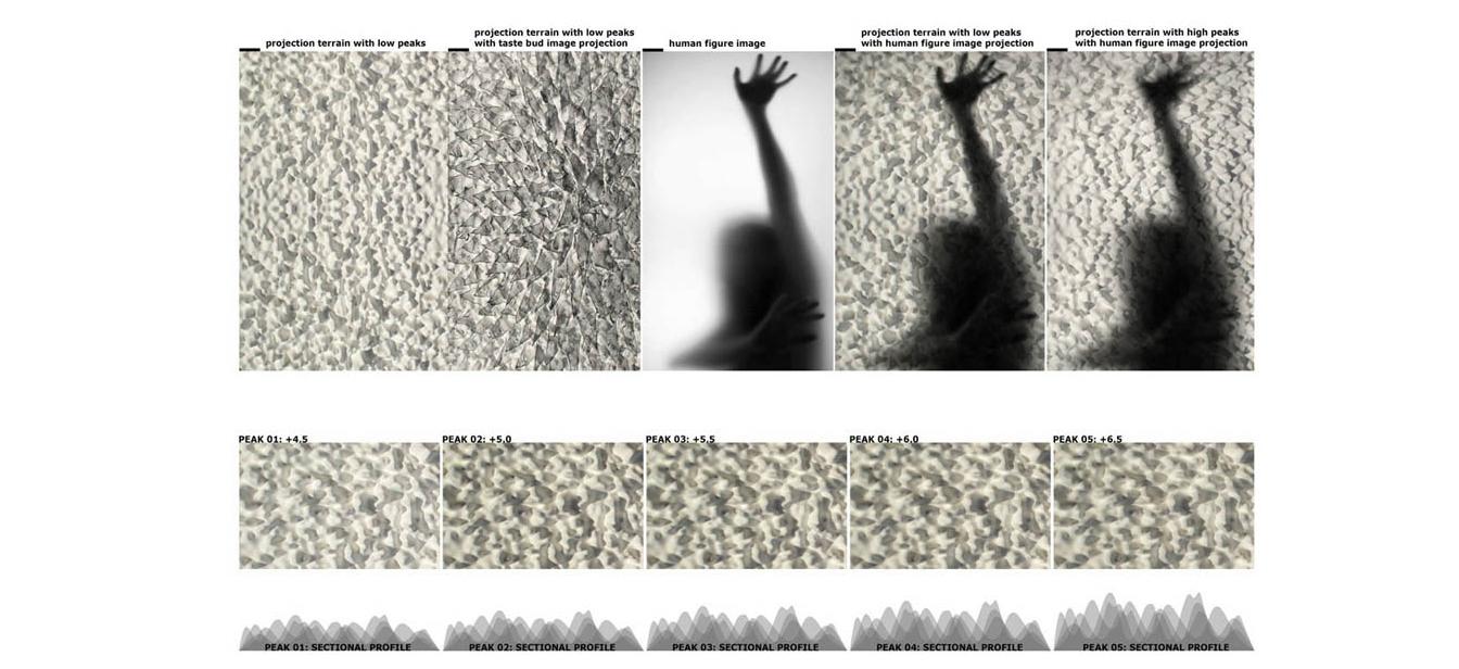 Patricia-Olynyk_Dark-Skies_06_Shadow-diagram.jpg