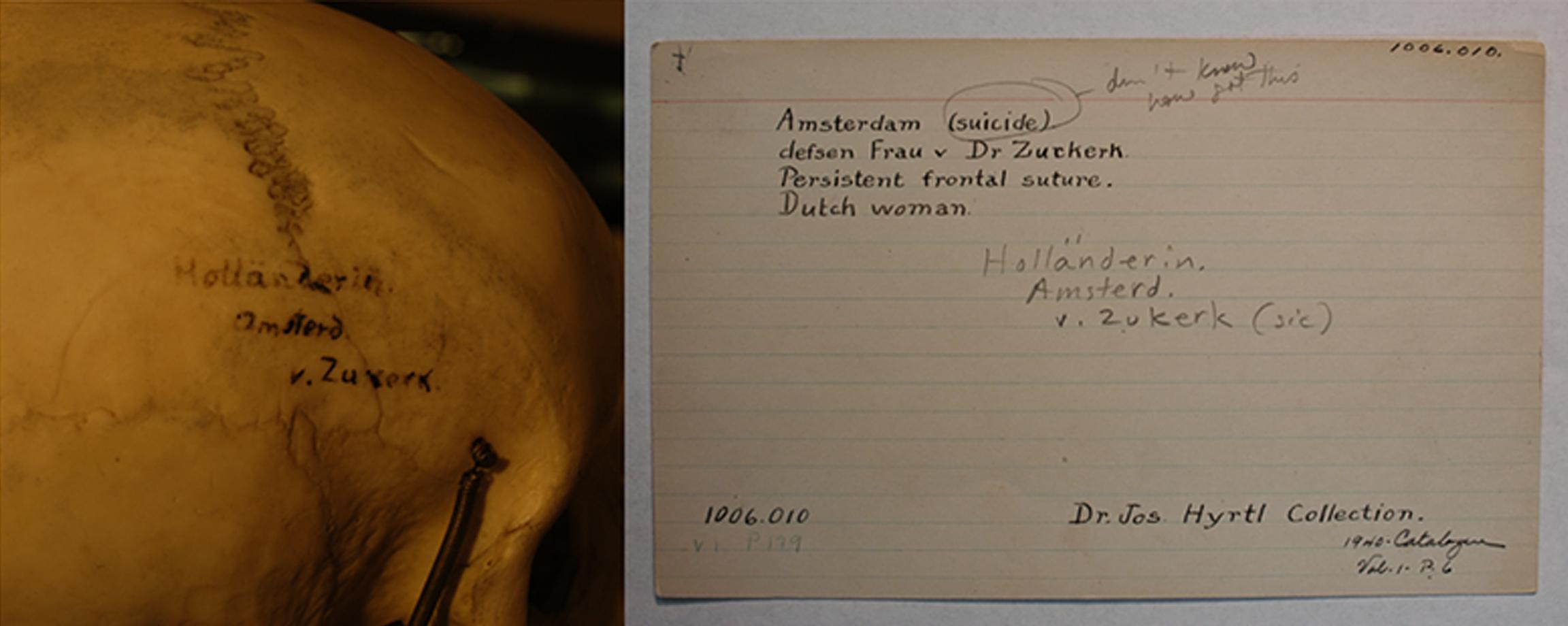 Dutch Suicide.jpg